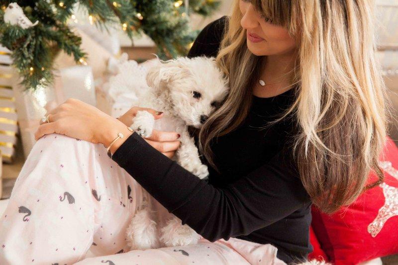 malti-poo-christmas-pajamas