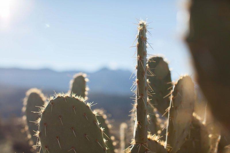 tucson-arizona-2017