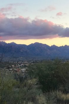 arizona-instagram