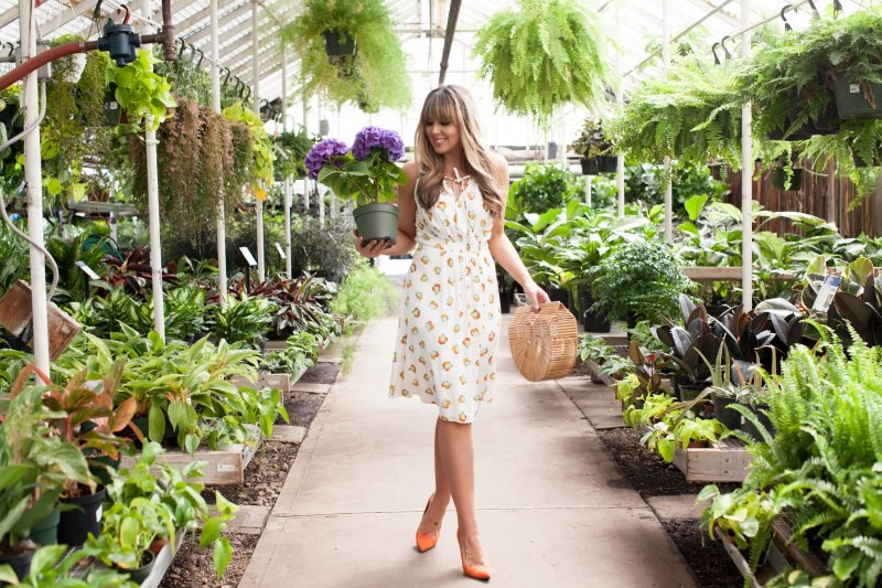 kate-spade-oranges-dress