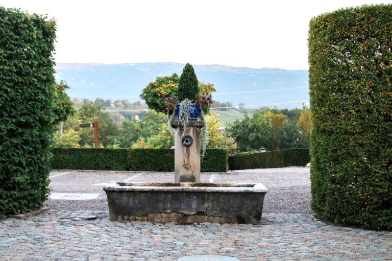 domaine de chateauvieux switzerland